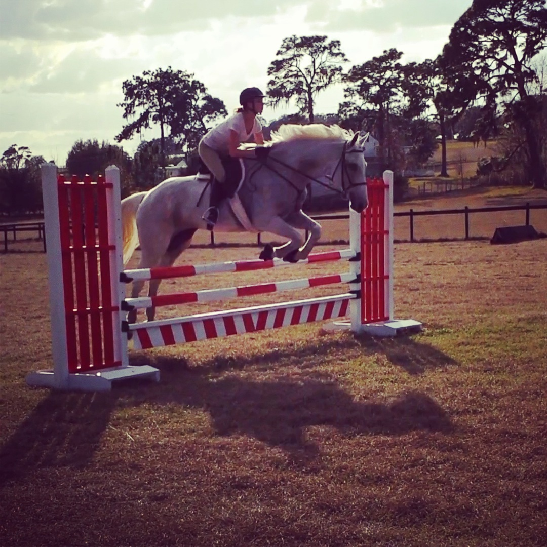 Lessons at Carousel Farm Trilby
