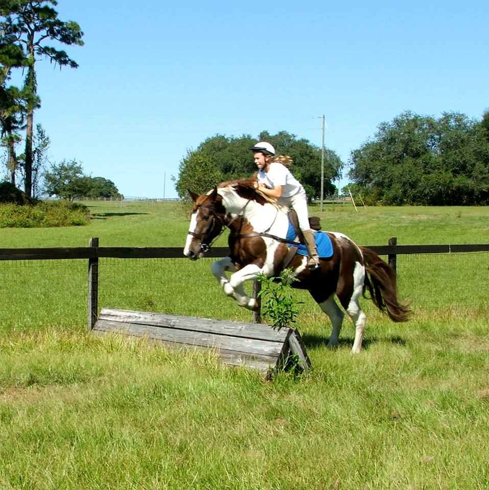Riding Lessons - Carousel Farm Trilby
